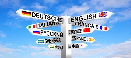 Translation agency or freelance translator?